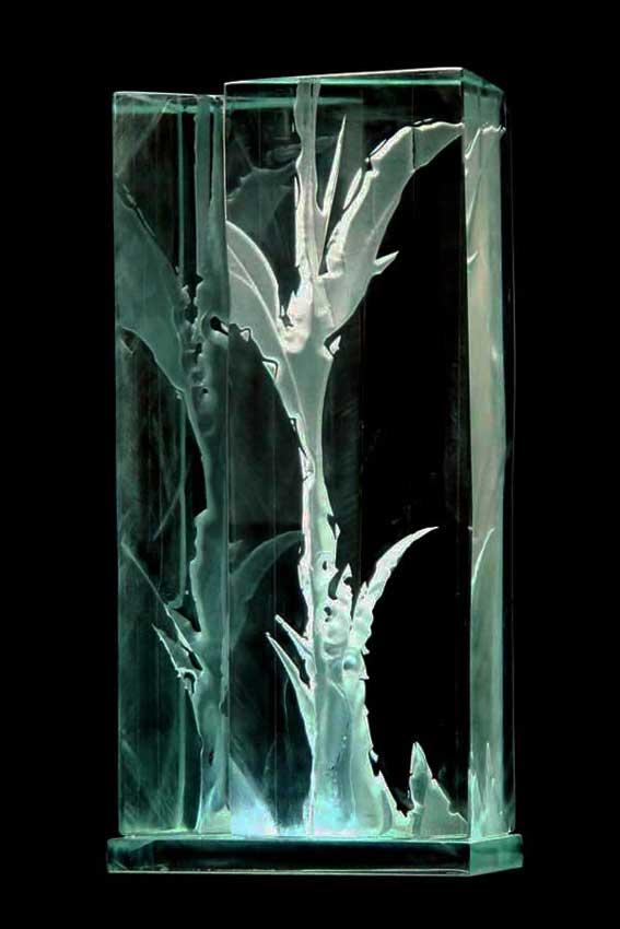 Accueil portfolio : La nature algues dyptique 6